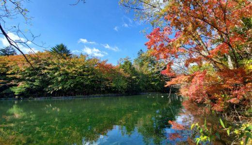 そして、軽井沢。