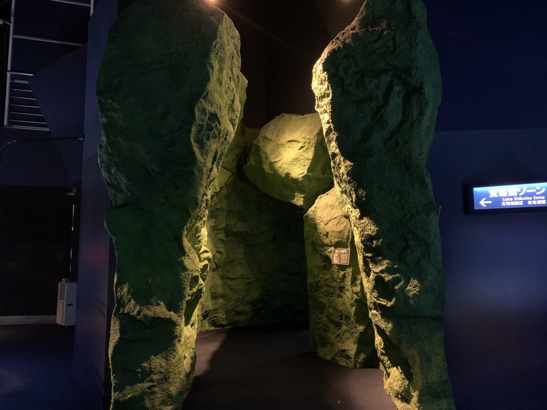 千歳水族館 苔の洞門