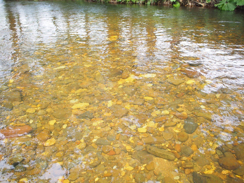 サンル川の流れ