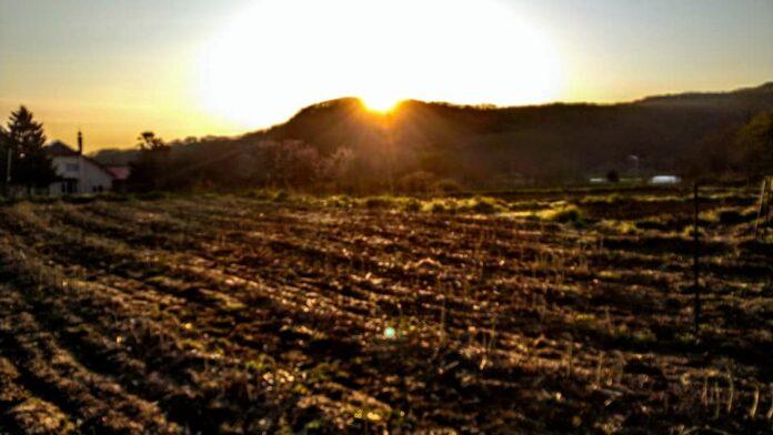 島牧の夜明け