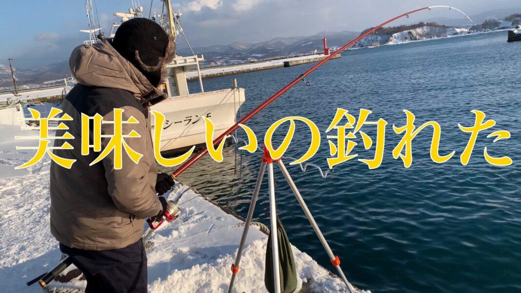 北海道 ホッケ